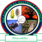 Nkayi Rural District Council